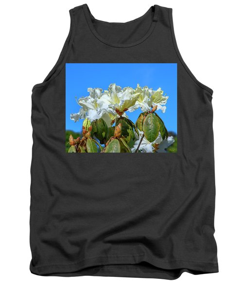 Rhododendron Ciliicalyx Dthn0213 Tank Top