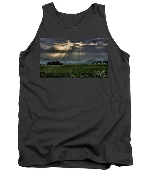 Rice Fields Rays Light  Tank Top by Chuck Kuhn