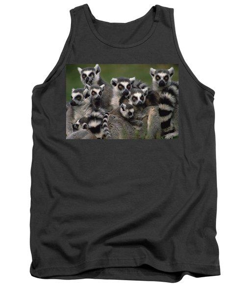 Ring-tailed Lemur Lemur Catta Group Tank Top