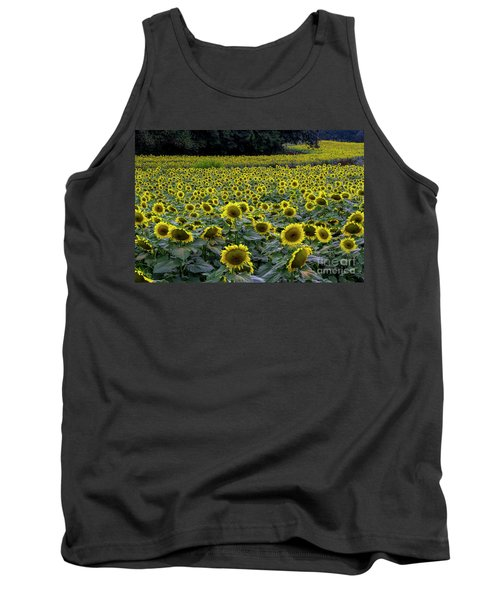 River Of Sunflowers Tank Top by Barbara Bowen