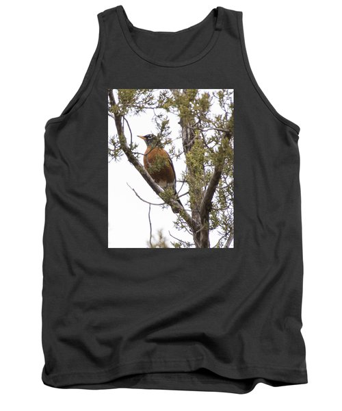 Robin On The Lookout Tank Top by Laura Pratt