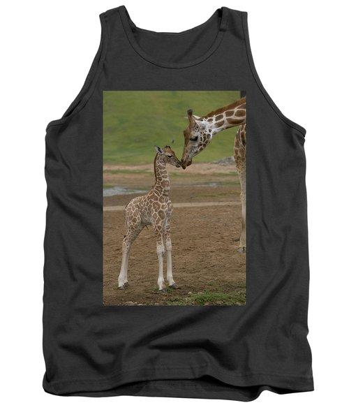 Rothschild Giraffe Giraffa Tank Top