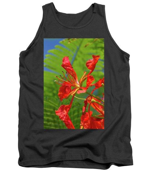 Royal Poinciana Flower Tank Top