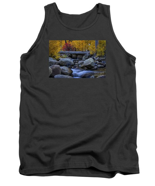 Rushing Into Autumn Tank Top by Mitch Shindelbower