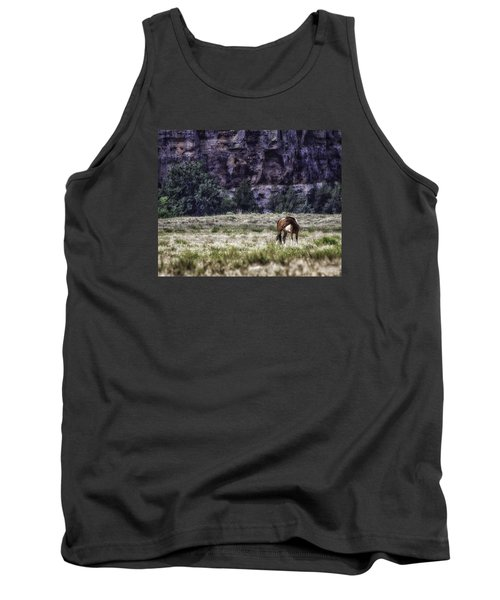 Safe In The Valley Tank Top