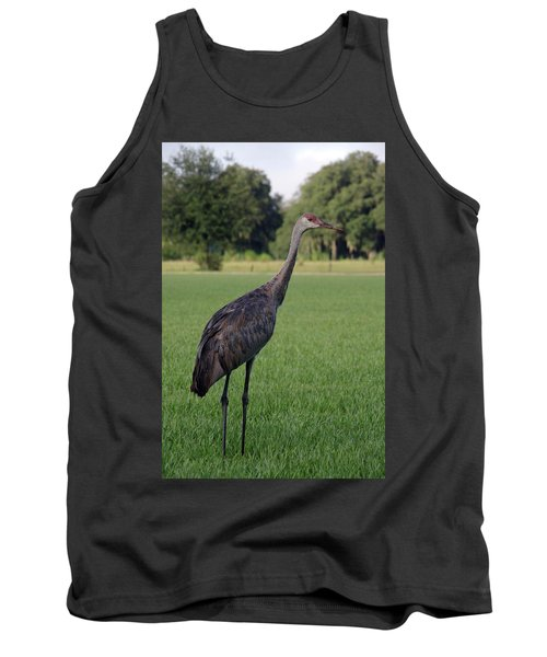 Sandhill Crane Tank Top by Richard Rizzo