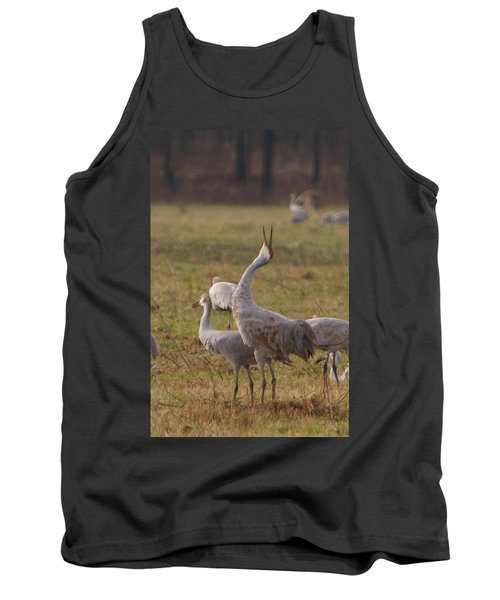 Tank Top featuring the photograph Sandhill Delight by Shari Jardina