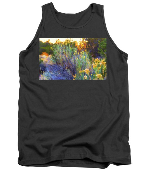 Tank Top featuring the photograph Santa Fe Beauty by Stephen Anderson