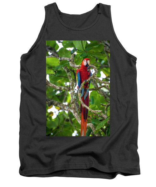 Tank Top featuring the photograph Scarlet Macaw by David Morefield