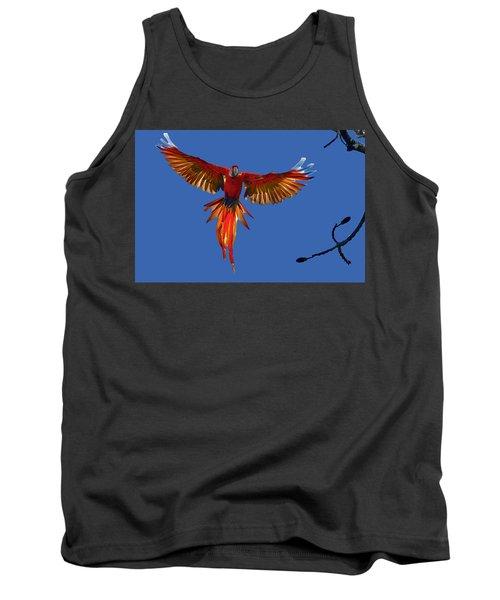 Scarlet Macaw On The Osa Peninsula Tank Top