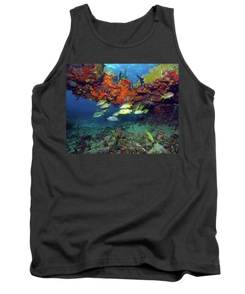 Schooling Fish At Calf Rock Tank Top