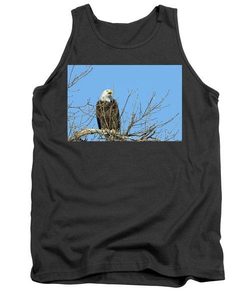 Screeching Eagle Tank Top by Brook Burling
