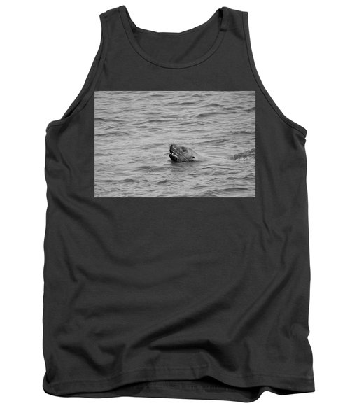 Sea Lion In The Wild Tank Top