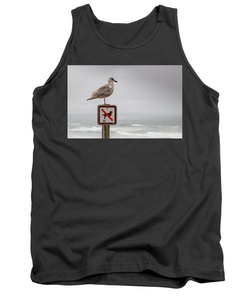 Seagull Standing On Sign And Looking At The Ocean Tank Top