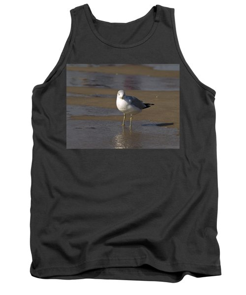 Tank Top featuring the photograph Seagull Standing by Tara Lynn