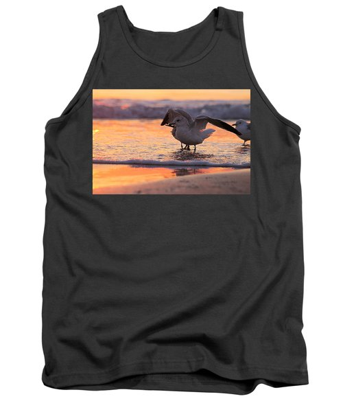 Seagull Stretch At Sunrise Tank Top