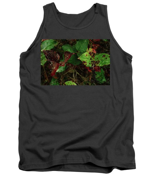 Season Color Tank Top