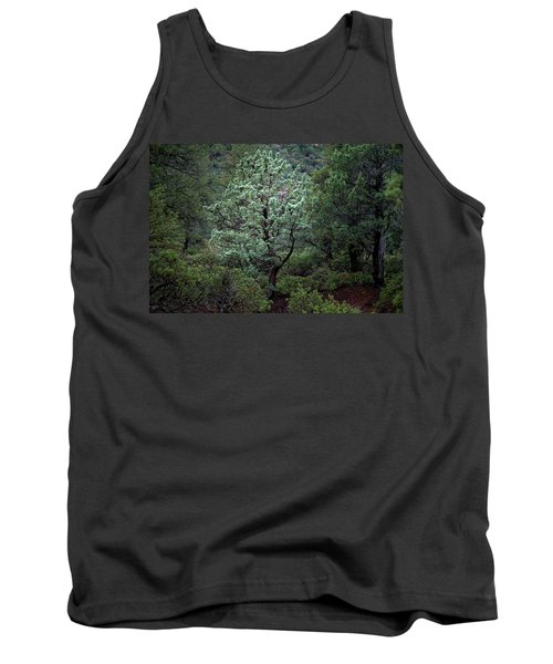 Sedona Tree #1 Tank Top