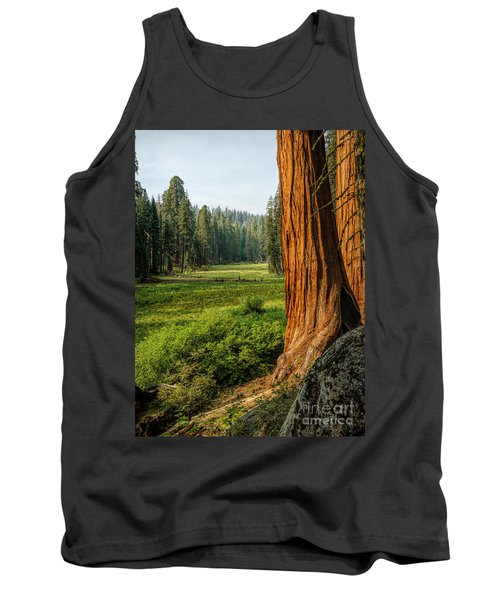 Sequoia Np Crescent Meadows Tank Top