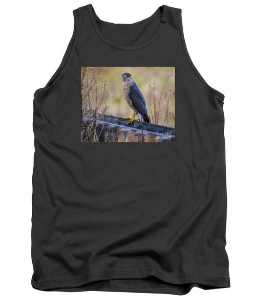 Tank Top featuring the photograph Shakerag Coopers Hawk by Barbara Bowen