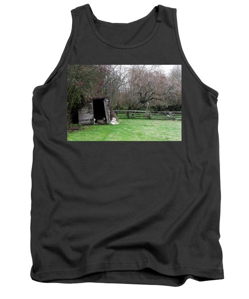Sheep Shed Tank Top