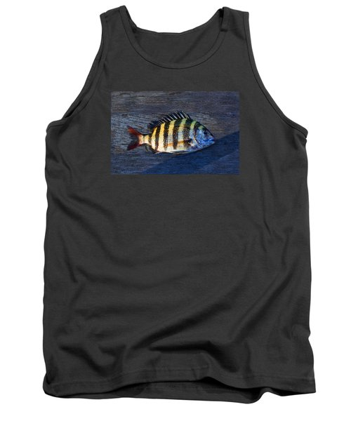 Tank Top featuring the photograph Sheepshead Fish by Laura Fasulo