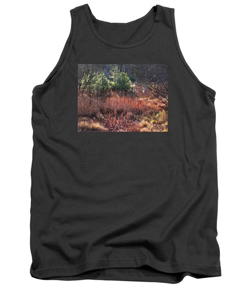 Shimmering Sunlight On The Cattails Tank Top