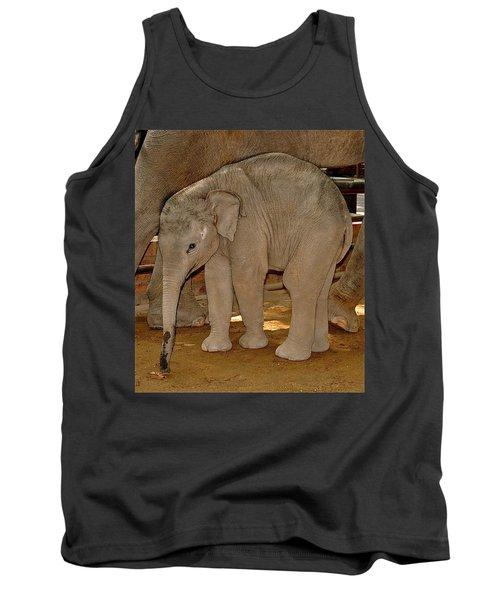 Shy Baby Elephant Tank Top