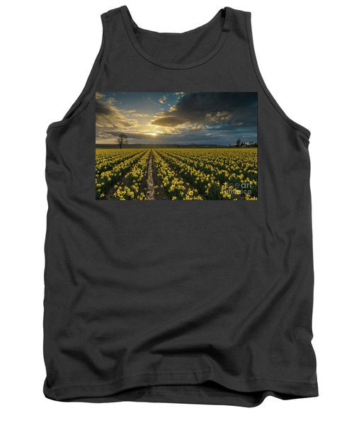 Tank Top featuring the photograph Skagit Daffodils Golden Sunstar Evening by Mike Reid