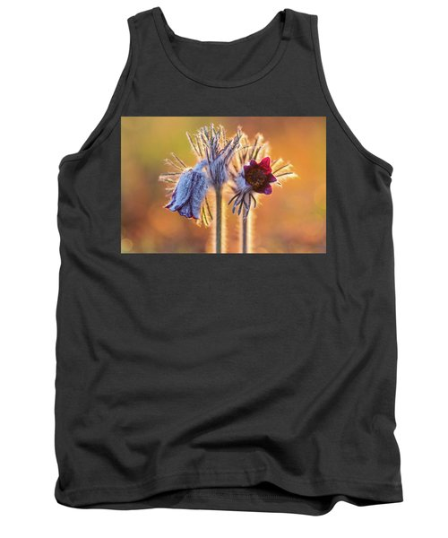 Small Pasque Flower, Pulsatilla Pratensis Nigricans Tank Top