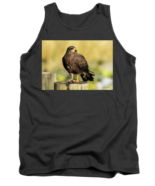 Snail Kite With A Snack Tank Top