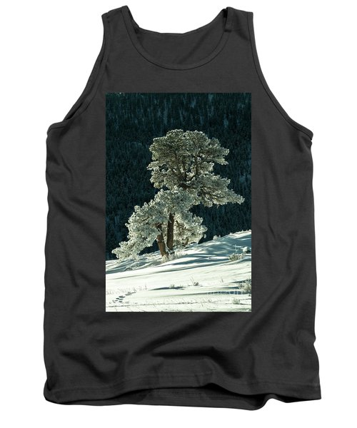 Snow Covered Tree - 9182 Tank Top