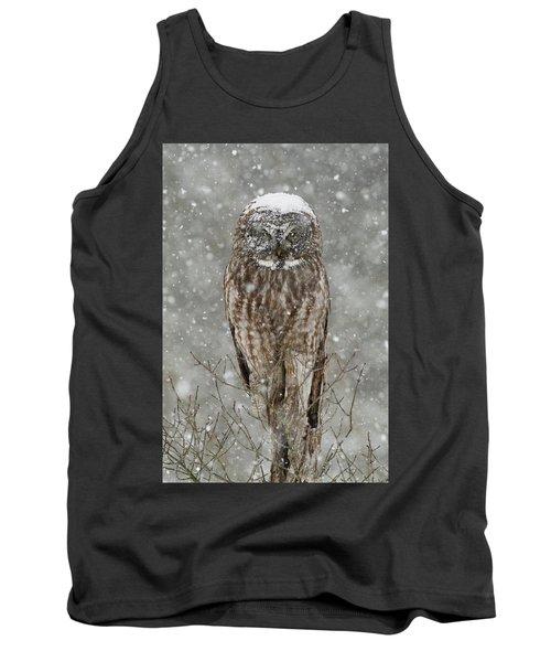 Snowstorm Owl Tank Top