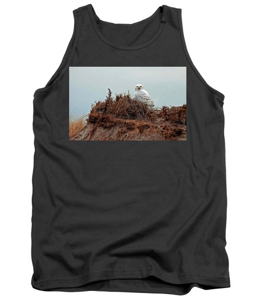 Snowy Owl In Dunes Tank Top