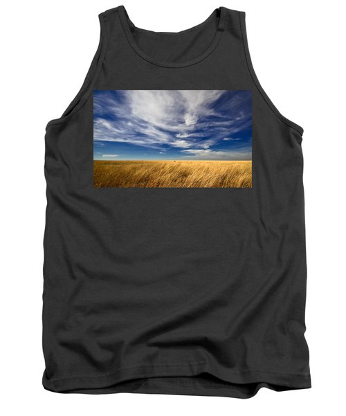 Splendid Isolation Tank Top