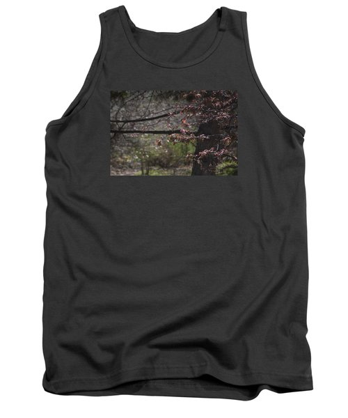Spring Crabapple Tank Top by Morris  McClung