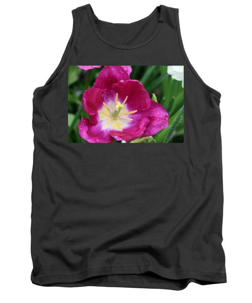 Spring Tulips 47 Tank Top by Pamela Critchlow