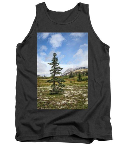 Spruce Tree In Summer Tank Top