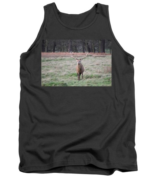 Stag In Richmond Park Tank Top