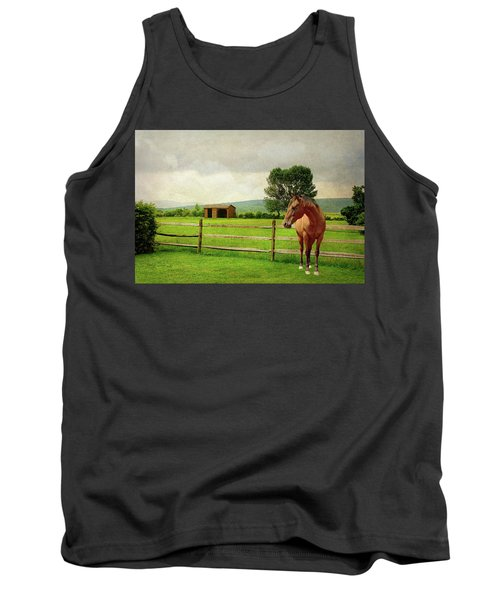 Tank Top featuring the photograph Stallion At Fence by Diana Angstadt