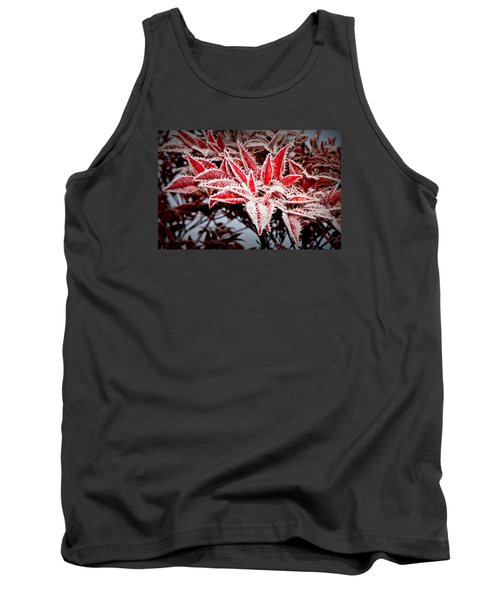 Tank Top featuring the photograph Star Leaves by Katie Wing Vigil