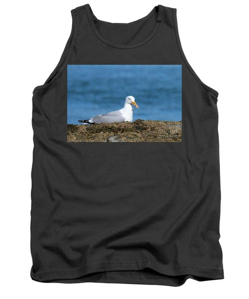 Tank Top featuring the photograph Starfish Dinner by Debbie Stahre