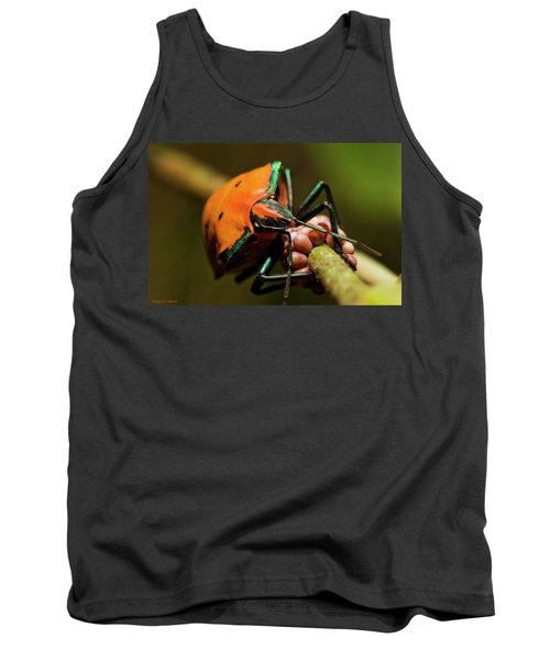Stink Bug 666 Tank Top by Kevin Chippindall