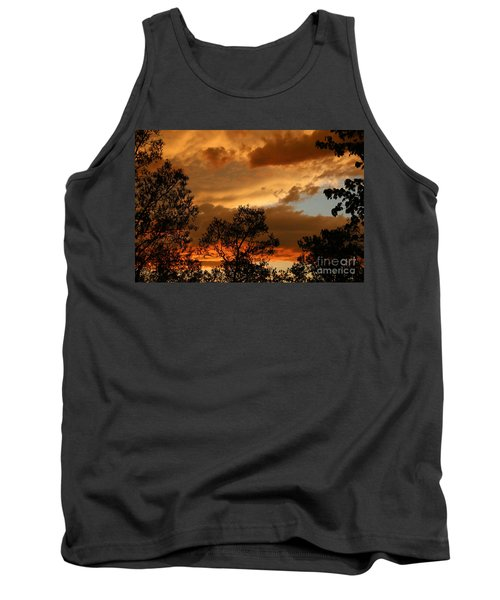 Stormy Sunset Tank Top by Marilyn Carlyle Greiner