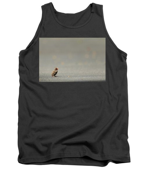 Story Of The Baby Chipping Sparrow 3 Of 10 Tank Top by Joni Eskridge