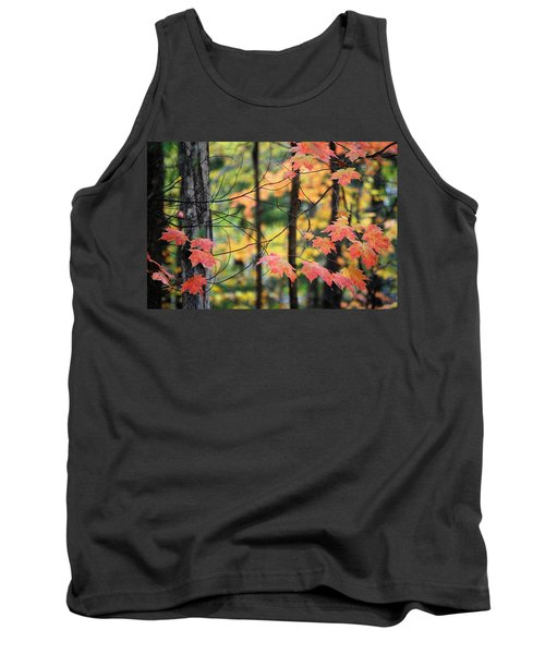 Stringing Up The Colors Tank Top