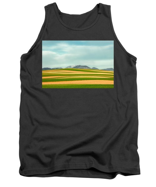 Stripes Of Crops Tank Top