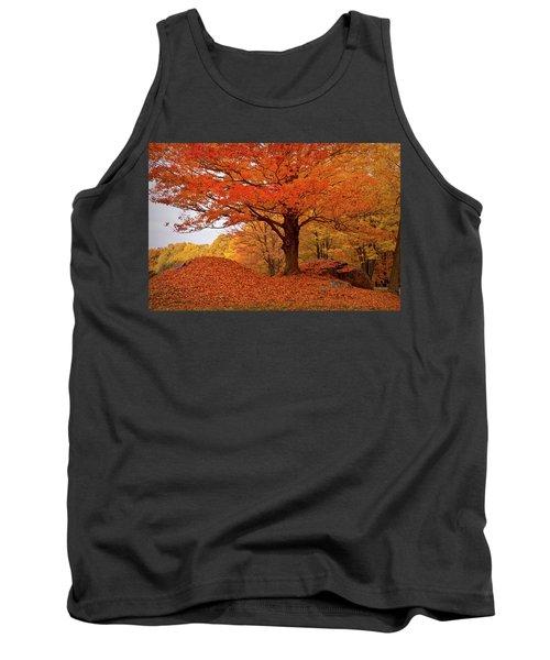 Sturdy Maple In Autumn Orange Tank Top
