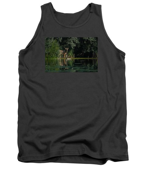 Summer Morning Walk Tank Top
