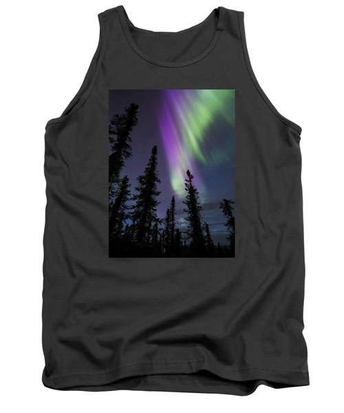 Sun-kissed Aurora Above The Spruces Tank Top